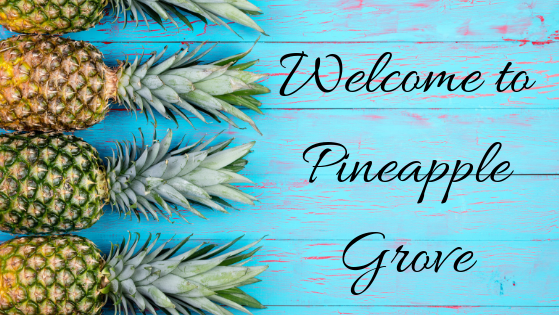 Pineapple Grove: A New Book Series